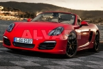 BOXSTER (981)