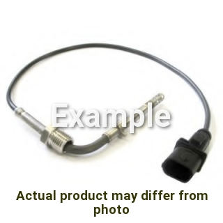 Exhaust Gas Temperature Sensor for Fiat