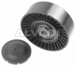 Tensioner pulley